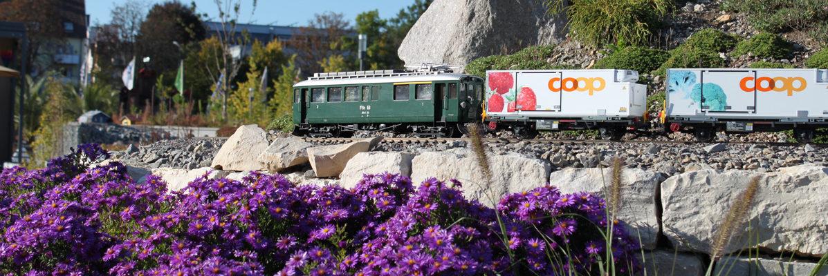 gebrauchte_gartenbahn63-e1521743771407